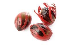 Nutmeg seeds Stock Photography
