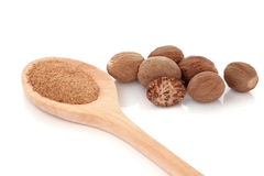 Nutmeg Spice Royalty Free Stock Photography