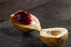 Nutmeg surowy przy wyspą Grenada fotografia stock