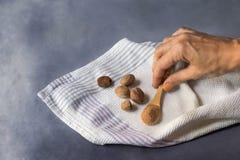 Nutmeg w adrze i ziemia na dishcloth obraz royalty free