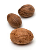 Nutmeg on white Royalty Free Stock Images