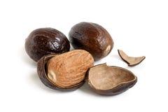 Nutmeg Stock Photos