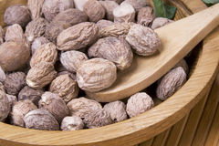 Nutmeg in wooden plate Stock Images