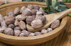 Nutmeg in wooden plate Royalty Free Stock Photos