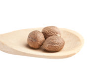 Nutmeg in a wooden spoon Royalty Free Stock Photography