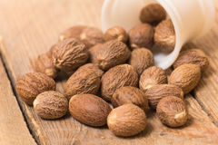 Nutmeg Royalty Free Stock Photography
