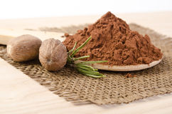 Nutmegs με ένα κλαδάκι της σκόνης δεντρολιβάνου και κακάου Στοκ εικόνες με δικαίωμα ελεύθερης χρήσης