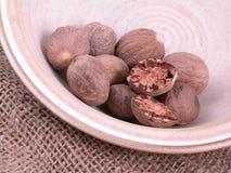 Nutmegs Royalty-vrije Stock Fotografie