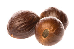 Nutmegs Macro Isolated Royalty Free Stock Image