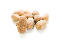 Nutmegs Royalty Free Stock Photography