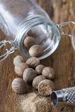 Nutmegs spice in glass Royalty Free Stock Images