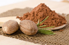 Nutmegs with a sprig of rosemary and cacao powder Royalty Free Stock Image