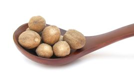 Nutmegs in wooden spoon Stock Image