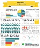 Nutrição da gravidez infographic Foto de Stock Royalty Free