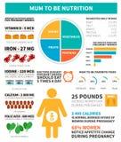 Nutrição da gravidez infographic Foto de Stock