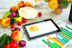 Nutrição e orientação saudáveis do software Fotos de Stock Royalty Free