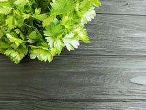 Nutrição fresca da salsa em um ingrediente de madeira preto do fundo Fotografia de Stock
