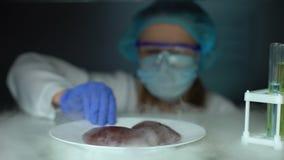 Nutricionista que toma rins do refrigerador e que verifica propriedades, qualidade de alimento vídeos de arquivo