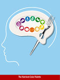 The Nutrient Color Palette Brain Shape Stock Photography