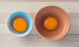Nutrient eggs. Two nutrient eggs in different ceramic bowls Stock Image