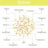 Nutriente de Quinao dos fatos e dos benefícios de saúde, gráfico da informação Foto de Stock Royalty Free