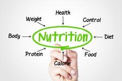 nutrition Photo libre de droits
