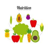 Nutrition concept design royalty free illustration