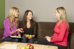Nutrition Consultation Stock Photography