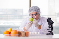 The nutrition expert testing food products in lab Stock Images
