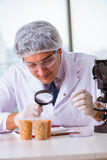 The nutrition expert testing food products in lab Royalty Free Stock Photo