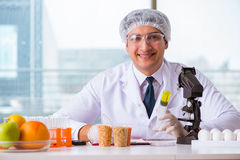 The nutrition expert testing food products in lab Royalty Free Stock Photography