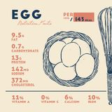 Nutrition Fact of Egg, Hand draw sketch vector. vector illustration