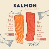 Nutrition fact of Wild and farmed salmon. Nutrition fact of Wild and farmed salmon, hand draw sketch vector. salmon filet hand draw stock illustration