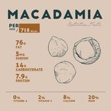Nutrition facts of of macadamia stock illustration