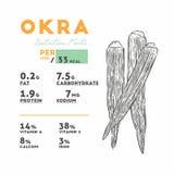 Nutrition facts of okra, hand draw vector vector illustration