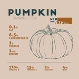 Nutrition facts of pumpkin, hand draw sketch vector. Infographic vector illustration