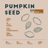 Nutrition facts of Pumpkin seed, hand draw vector. Nutrition facts of Pumpkin seed, hand draw sketch vector vector illustration