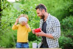 Nutrition habits. Family enjoy homemade meal. Personal example. Father teach son eat natural food. Little boy and dad royalty free stock photo