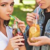 Nutrition saine Thé potable de detox de couples Image libre de droits