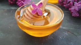 Nutrition savoureuse de fleur de fleur lilas de miel sur le fond concret noir, composition banque de vidéos