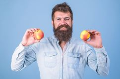 Nutritional choice. Man with beard hipster hold apple fruit in hand. Nutrition facts and health benefits. Apples popular stock images