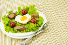 The nutritional and delicious breakfast, fried egg Royalty Free Stock Image