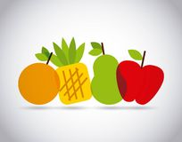 Nutritional food design Royalty Free Stock Image