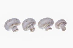 Nutritional value of mushrooms Stock Photo