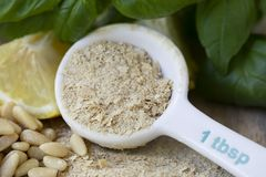 Nutritional Yeast or Pesto Royalty Free Stock Image