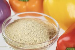 Nutritional Yeast. Surrounded by other fresh ingredients for creamy vegan peppers and onions stock image