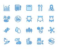 Free Nutritionist Flat Line Icons Set. Diet Food, Nutritions - Protein, Fat, Carbohydrate, Fit Body Vector Illustrations Stock Images - 168609344
