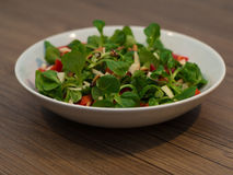 Nutritious fresh salad Royalty Free Stock Images