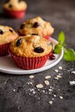 Nutritious oatmeal muffins with cranberries Royalty Free Stock Images