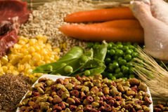 Nutritious pet food. Pet food on a white bowl with nutritious ingredients displayed in the background Royalty Free Stock Images